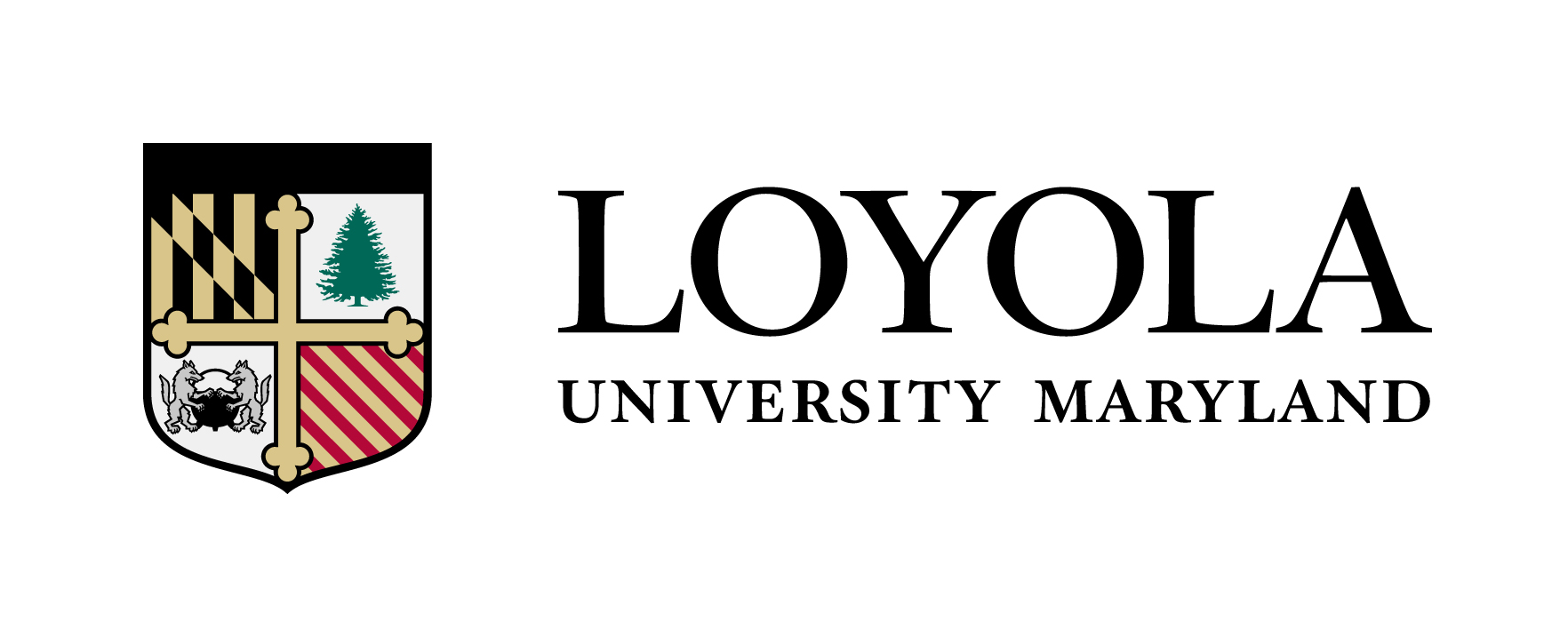Loyola University Maryland Banner.jpg