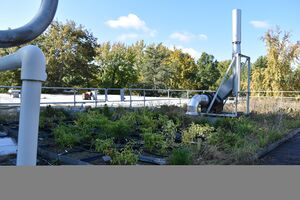Agriculture Building's Green Roof.jpg